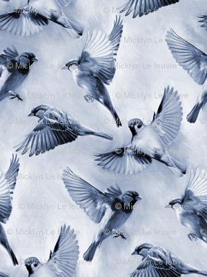 Sparrow Flight blue - large