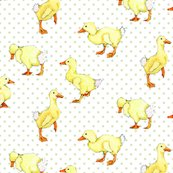 Ducklings_shop_thumb