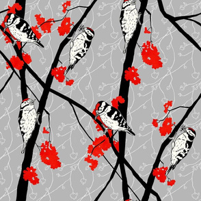 Woodpeckers and Berries