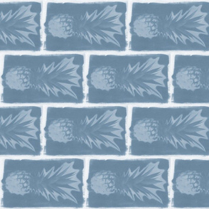 pineapple bricks denim