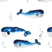 Rwhales_shop_thumb