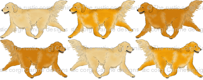 Trotting Golden Retriever border - small
