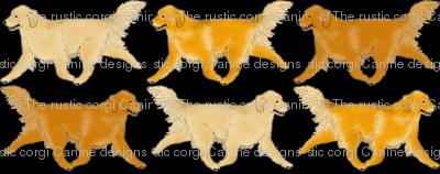 Trotting Golden Retriever border B - small
