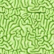 TIny Green Brains
