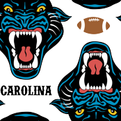Carolina Football Panther Cardiac Cats