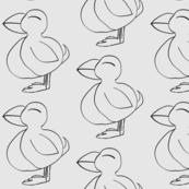Puffin a Lunni bird of nature