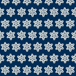 Snowflakes in the night sky