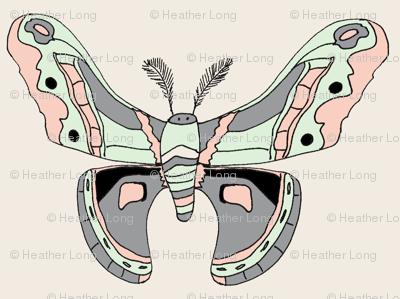 Pastel Crecopia Moth
