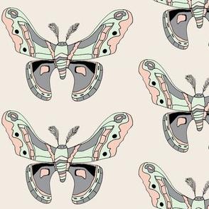 Rrrrrrlimited_color_moth_shop_thumb
