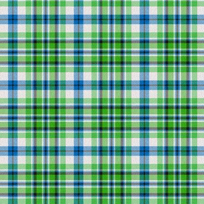 Green-Blue Plaid