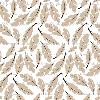 Feather 008