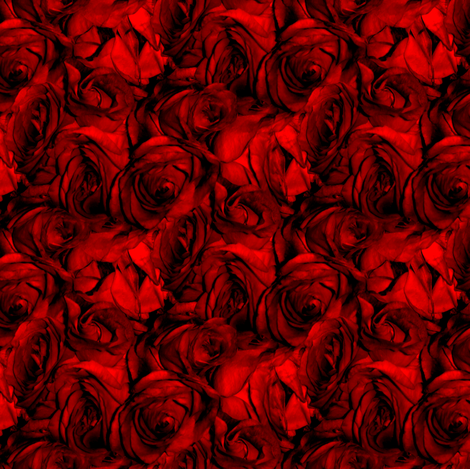 Blood Roses, Blood Roses ~ Medium  fabric by peacoquettedesigns on Spoonflower - custom fabric