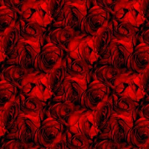 Blood Roses, Blood Roses ~ Medium