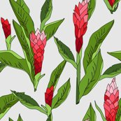 Gingerflower_red_light.ai_shop_thumb
