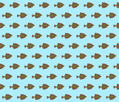 Starry Flounder in blue fabric by combatfish on Spoonflower - custom fabric