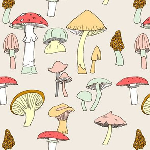Hand drawn mushrooms in color