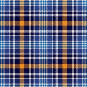 Blue and Orange Plaid