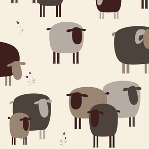 Brown Sheep Wallpaper