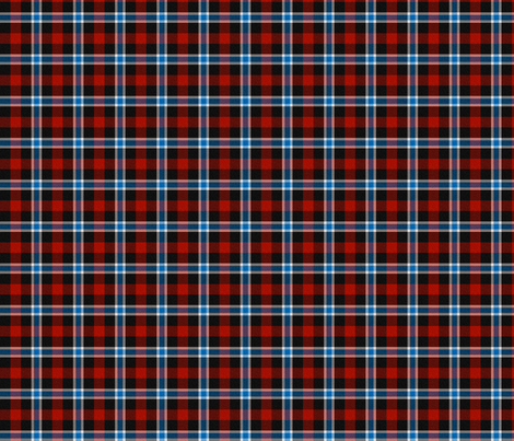 Blue and Red Plaid fabric by jandq0306 on Spoonflower - custom fabric