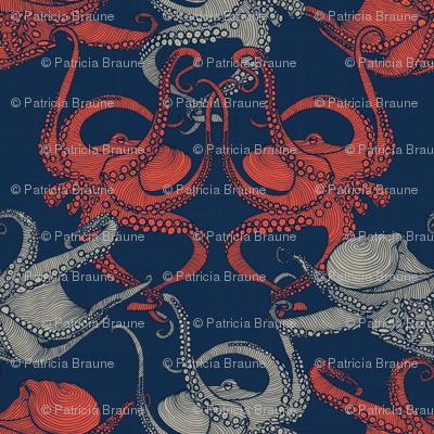 Cephalopod - Octopi - Navy