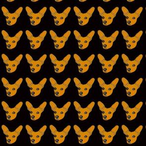 Orange Mozart