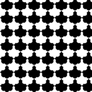 Black and White Scallop