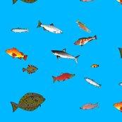Ralaskafishscatter1_shop_thumb