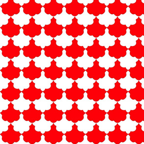 Red and White Scallop