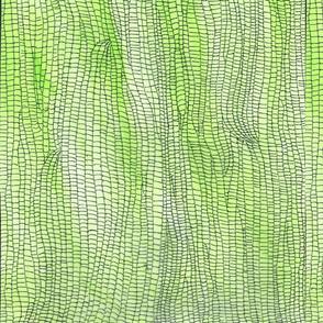 Green_Iguana_skin_