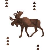 Moose // Watercolor brown