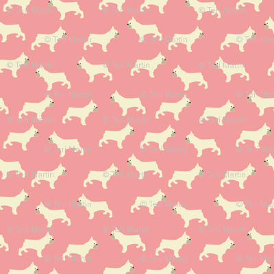 French Bulldogs in Pink