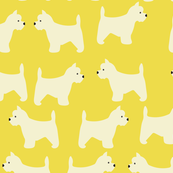 west highland terrier in yellow