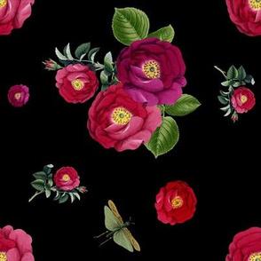 Night Garden Roses