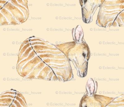 Custom Nyala Antelopes