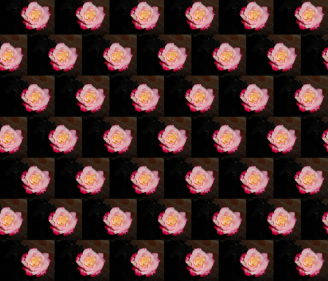 Evening Rose Blooms (Ref. 4905) fabric by rhondadesigns on Spoonflower - custom fabric