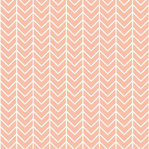 Blush Sprigs and Blooms Coordinate Chevron 4