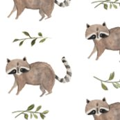 Rrrraccoon_vine_edited-1_shop_thumb