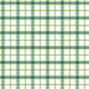 GreenPlaid