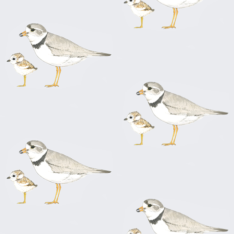 Piping Plover fabric by toreywahlstrom on Spoonflower - custom fabric