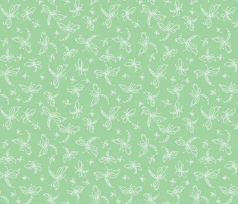 Rrdragonflies.2.3.16-01_shop_preview