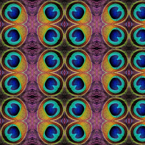 peacock_feather_eye_2