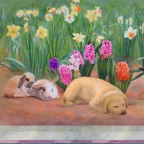 Nap in the Meadow, Rabbits and Puppy
