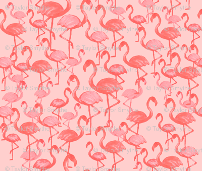 Light Flamingo by The Prime Floridian
