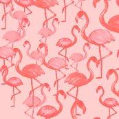 Flamingo_pattern_01_shop_thumb