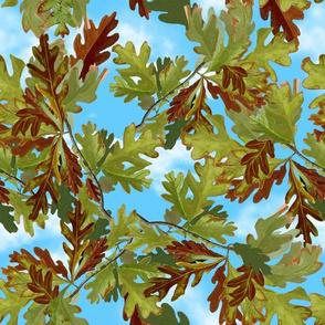 Canada White Oak Leaves Green Blue