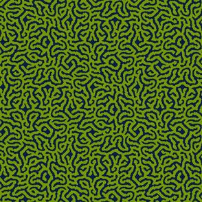 Brainy Coral