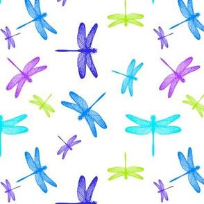 Dancing Dragonflies Summer