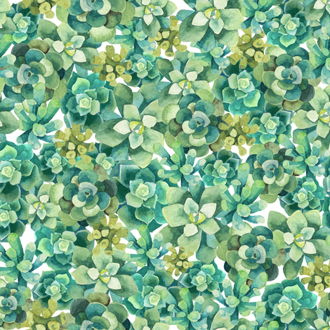 Cozy Green Succulents fabric by melinda_wolf_designs on Spoonflower - custom fabric