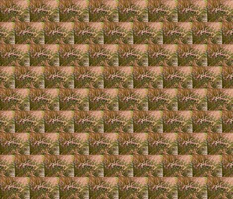 pink grass 2 fabric by shaunaroberts on Spoonflower - custom fabric