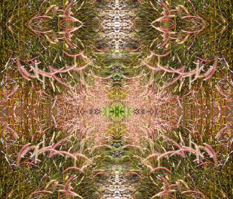 pink grass 1 fabric by shaunaroberts on Spoonflower - custom fabric